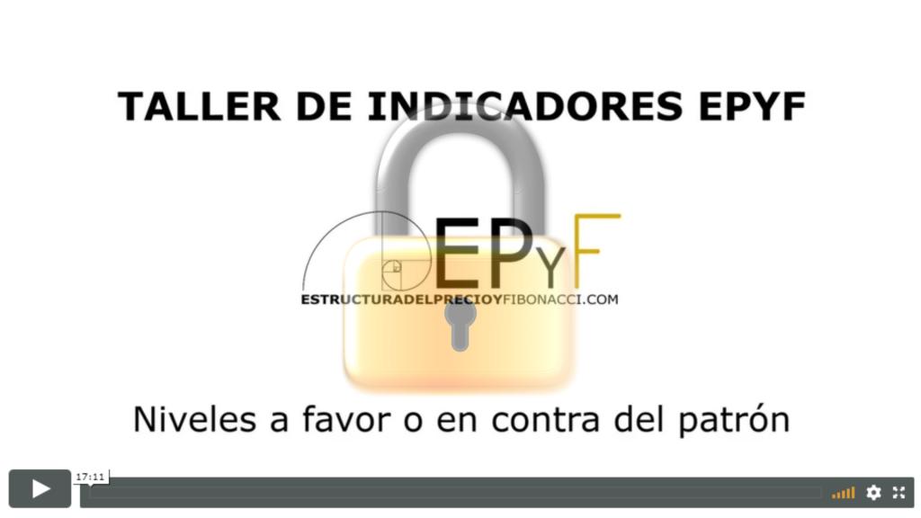 Taller de indicadores NinjaTrader EPyF - Niveles a favor o en contra del patrón